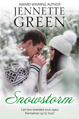 Snowstorm by Jennette Green